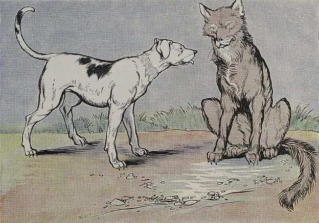 THE WOLF AND THE HOUSE DOG